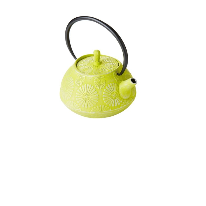 Cast iron teapot with filter silver green 1.1l